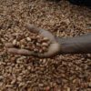 10 Facts about Fair Trade Chocolate