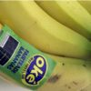 10 Facts about Fair Trade Bananas