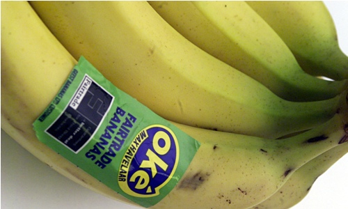 Facts about Fair Trade Bananas