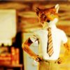 10 Facts about Fantastic Mr Fox