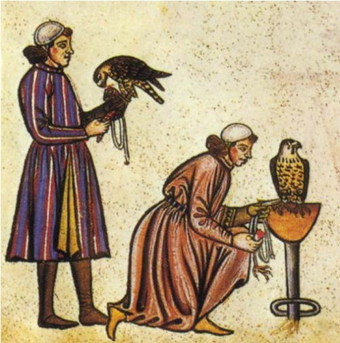 Falconry History